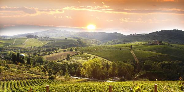 Casentino Green Estate - Tuscany